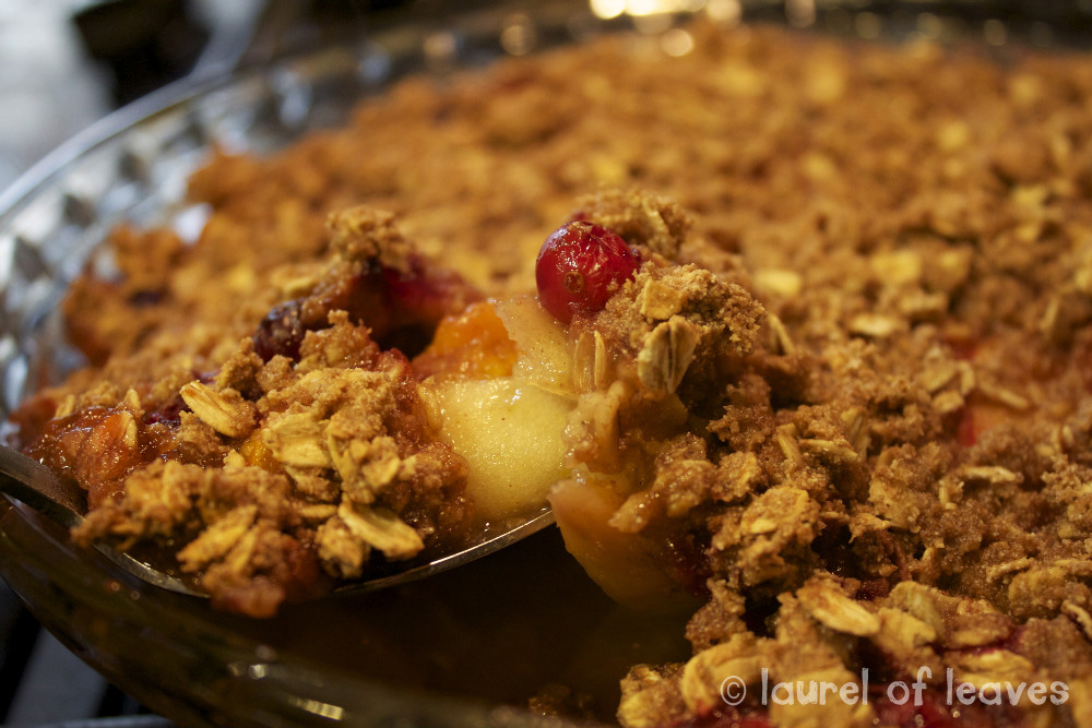 Cranberry Apple Crisp Ready to be Eaten