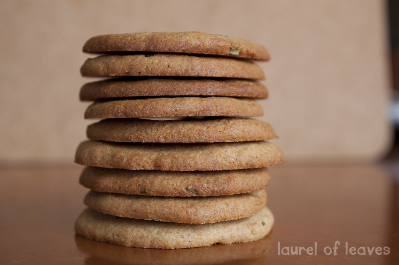 Stack of Lemon Rosemary Cookies