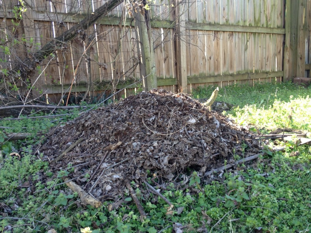 The start of our compost pile