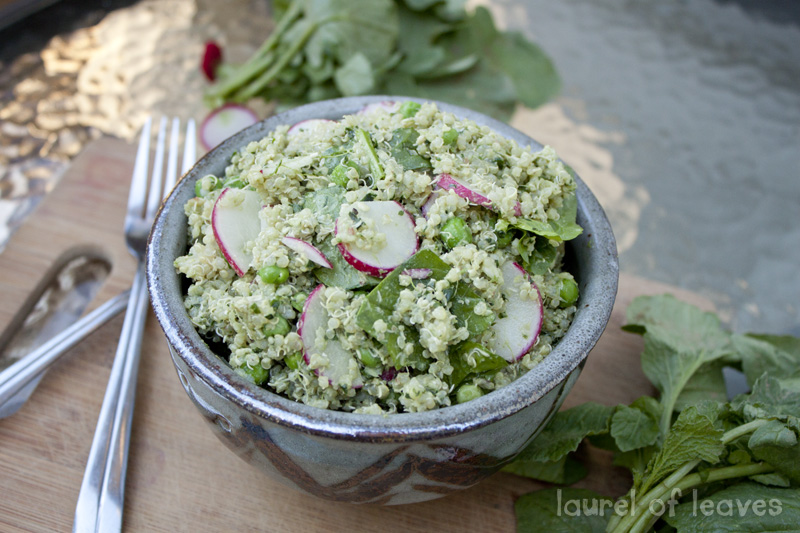 Spinach Pesto Quinoa Salad with Radishes